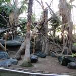 Die neue Orang-Utan Anlage
